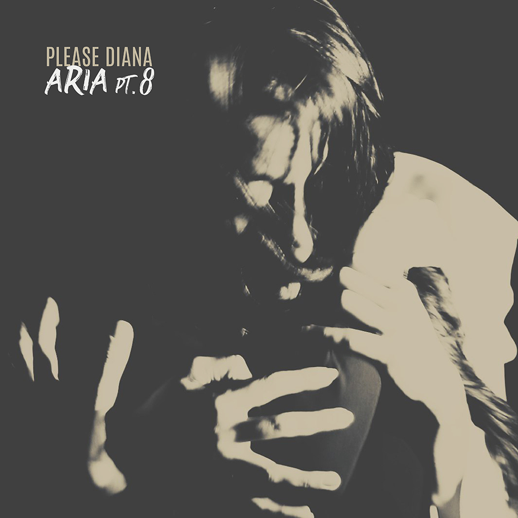 please-diana.aria_.8